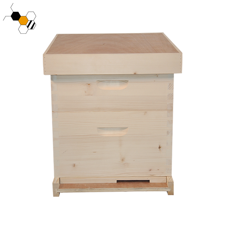 One piece board Langstroth beehive
